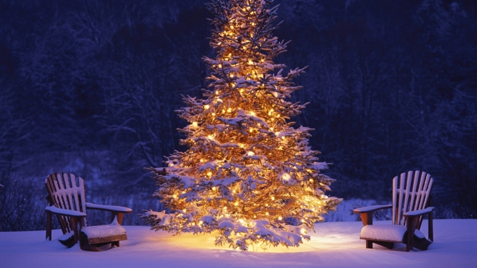 Christmas_Tree_in_Snow_Wallpaper_1280x720_wallpaperhere