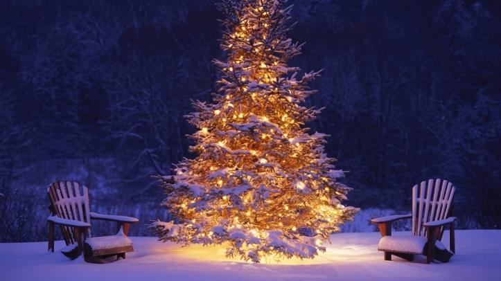 Christmas_Tree_in_Snow_Wallpaper_1280x720_wallpaperhere